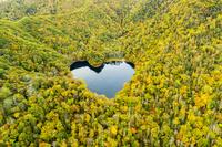 北海道 豊似湖 ハートの形をした湖 紅葉 日高山脈襟裳国定公園
