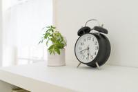 観葉植物と目覚まし時計