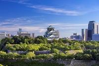 大阪府 大阪城の展望