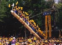 長野県 御柱祭・建御柱
