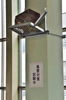 新潟県 浦佐駅 ホームの鳥害対策にスピーカー設置