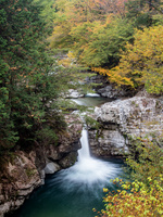 岐阜県 小川の大滝