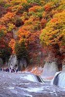 群馬県 沼田市 吹割の滝と紅葉