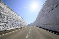 岩手県 八幡平の雪の回廊