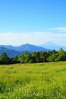 山梨県 八ヶ岳牧場 残雪の富士山と山並み