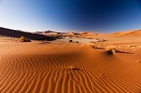 ナミビア ナミブ砂漠 ソサスブレイ 涸池 砂丘 朝