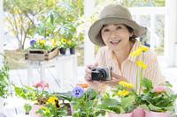 花の写真を撮る日本人のシニア女性