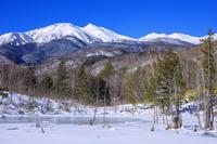 長野県 雪の乗鞍高原どじょう池より乗鞍岳