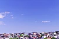 北海道 カラフルな住宅街の丘