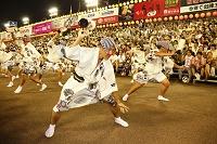 徳島県 阿波踊り