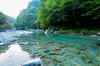 高知県 安居渓谷 乙女河原