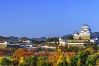兵庫県 秋の姫路城