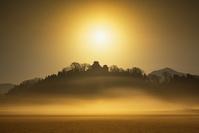 福井県 冬の越前大野城と朝霧