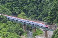 秋田県 秋田新幹線