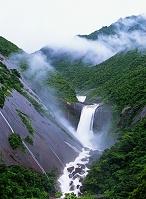 鹿児島県 屋久島 千尋の滝