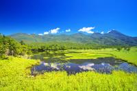 北海道 知床五湖 高架木道より一湖と知床連山