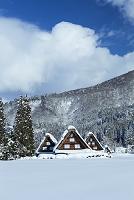 岐阜県 白川郷と雪