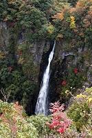 大分県 西椎谷の滝