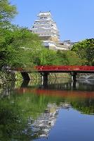 兵庫県 姫路城 堀に映る天守閣と朱塗りの橋
