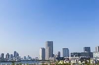 東京都 新豊洲から望む豊洲周辺のビル群
