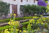 フェネラリーフェ庭園 グラナダ
