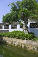中国 無錫 錫恵公園