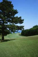 川奈ホテルゴルフコース・富士コース 14番ホール、416ヤード、パー4