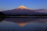 静岡県 残照に染まる富士山と昇る月