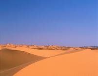 モロッコ サハラ チュビ砂丘