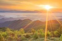 長野県 山並みと雲海