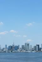 レインボーブリッジから見た東京の街並み