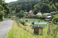 京都府 鹿やイノシシの防護ネット