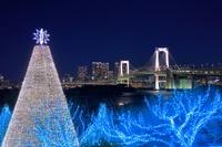 東京都 お台場のイルミネーション夜景