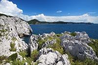 和歌山県 白崎海岸の石灰岩