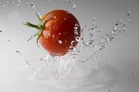 跳ねるトマト