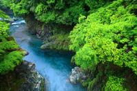 徳島県 美馬市 雨の穴吹川・剣峡