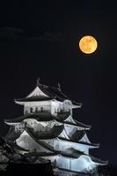 兵庫県 満月と姫路城
