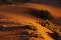 アメリカ合衆国 砂丘 モニュメントバレー
