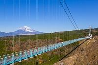 静岡県 三島スカイウォークと富士山