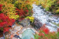 岐阜県 紅葉と新穂高の湯 新穂高温泉