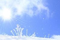 霧氷と粉雪と青空