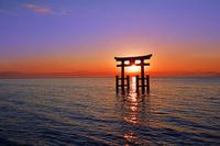 滋賀県 高島市 朝焼けの白鬚神社 日の出