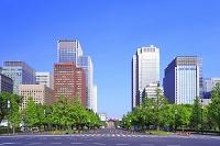 東京都 丸の内のビル群
