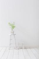 観葉植物と白い木製の家具