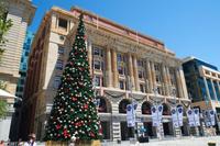オーストラリア パース クリスマスツリー