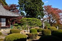 岐阜県 行基寺 客間と庭