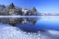 北海道 屈斜路湖の霧氷とフロストフラワー