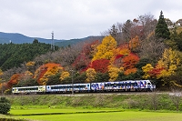 愛媛県 紅葉と内子線