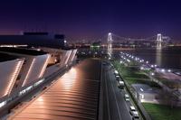 東京都 豊洲市場屋上緑化広場からレインボーブリッジ方面の夜景