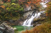 高知県 アメガエリの滝